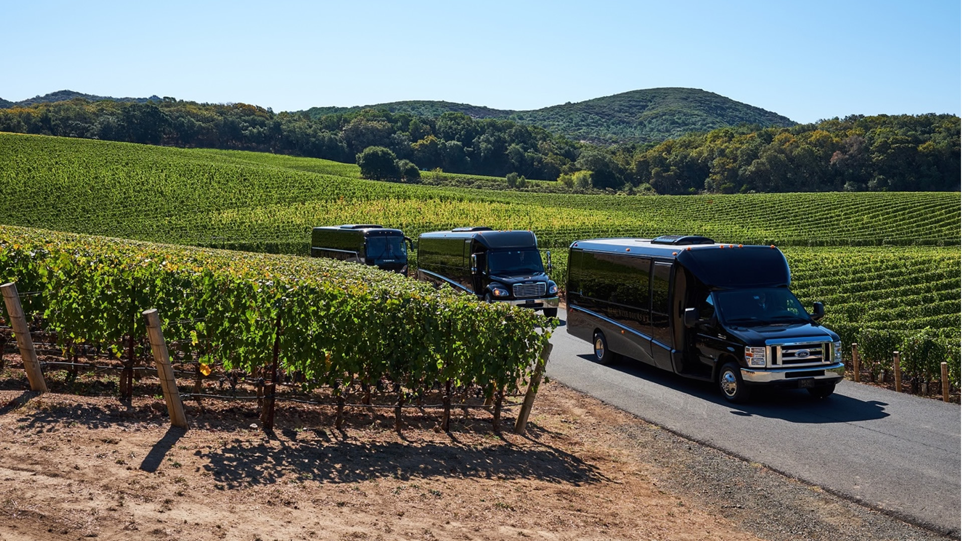What better way to spend a day in North Texas than check out three vineyards winning some serious national attention? Tastings and lunch included.